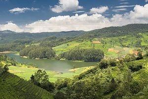 Doddabetta peak view image