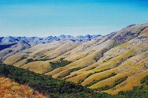 highest peaks TN