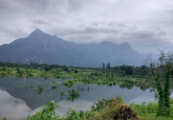 Kolli Hills Tamil Nadu