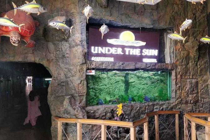 Under The Sun Aquarium Udaipur